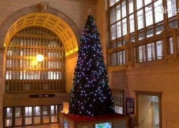 Christmas Spirit Tree
