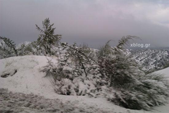 Ταξίδι Αθήνα - Ελάτη Τρικάλων, Χιονισμένο Τοπίο