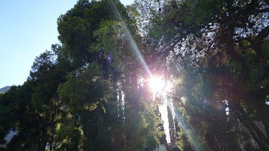 Φωτο από την κάμερα του Sony Xperia Z1