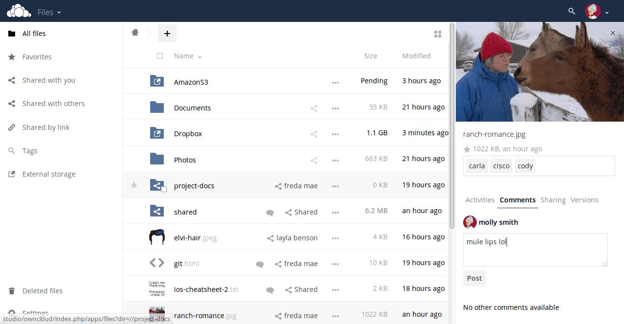 OwnCloud web