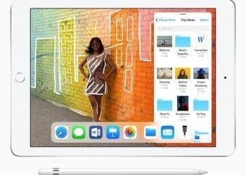 Apple iPad 9.7 inch 2018 Pencil Slider