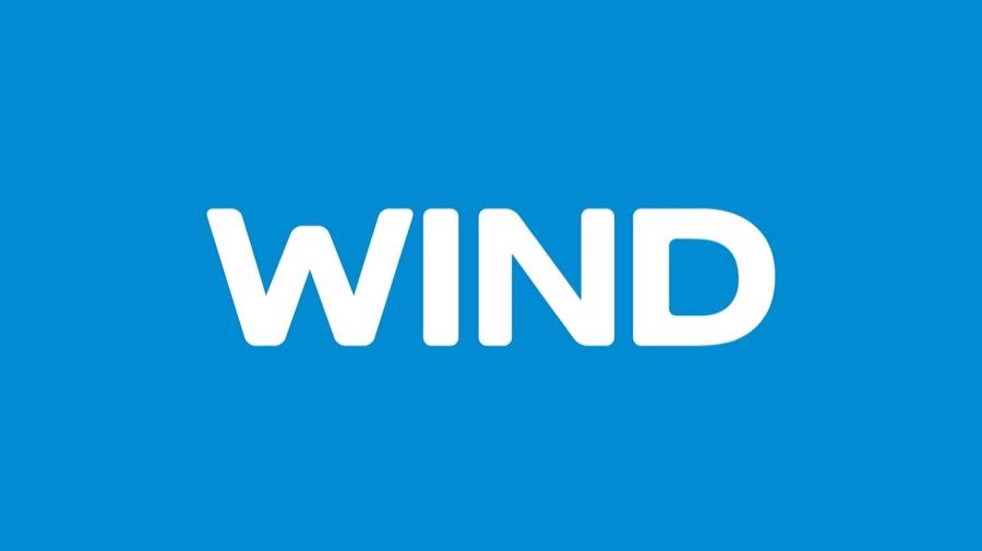 WIND Logo NEW ID 2