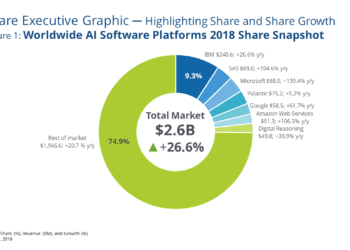 idc ww ai software platforms market share 2018
